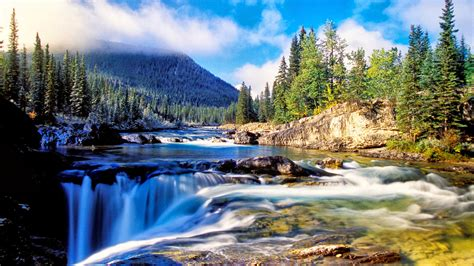 Nature Mountain Dense Spruce Forest, River Rock Waterfall