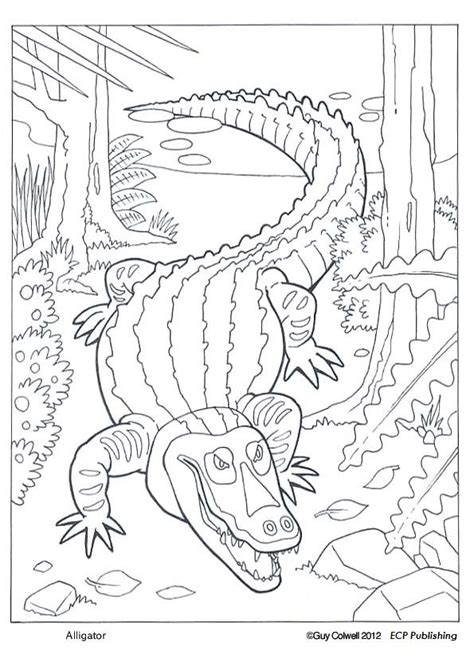 Swamp Animals Coloring Pages at GetColorings